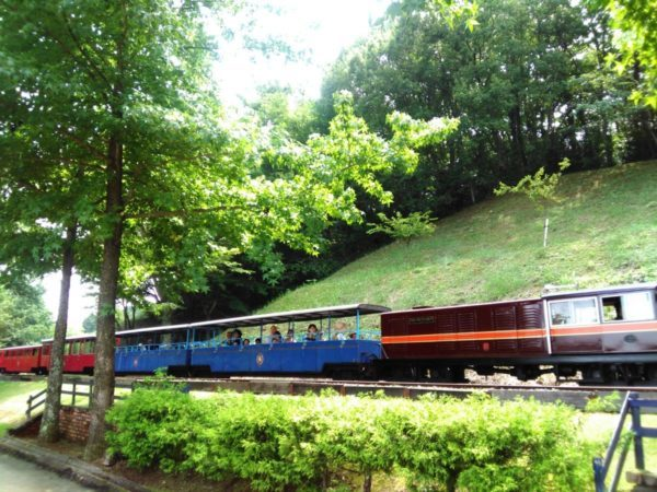 虹の郷の電車